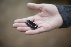 Fitbit One size